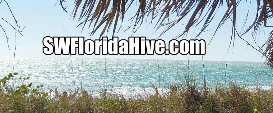 Southwest Florida Hive Connection